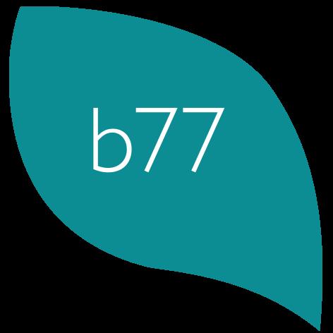 bernette b77 Logo
