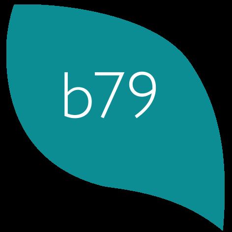 bernette b79 logo